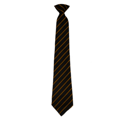 Penrice Clip on Ties