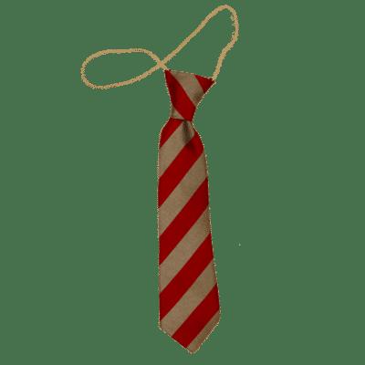 Charlestown School Tie