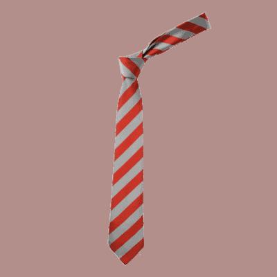 Redmoor Clip on Tie